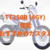 TT250R(4GY)フルサイズで軽く懐が広いオープンエンデューロ