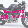 グース250(NJ46A)扱いきれるパワーが運転を楽しくさせてくれるシングルスポーツ
