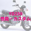 YD250(2HV)高速道路も乗れちゃう不人気ビジネスバイク